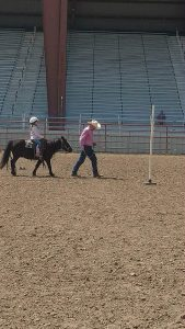 A young rider is working through a class on a lead line during a St. Vrain Roundup Club show.