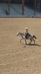 A female rider and her horse compete in a gymkhana event during a St. Vrain Roundup Club show at the Boulder County Fairgrounds