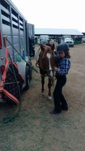 A young female rider tacks up her pony to ride in a class at a St. Vrain Roundup Club show.