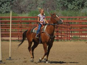 The outdoor arena at the Boulder County Fairgrounds is a lovely spot for this young female rider on her handsome horse in a speed event.