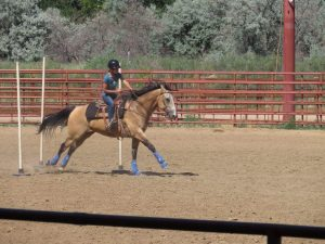 A female rider and horse compete in a pole-bending class at a St. Vrain Roundup Club show at the Boulder County Fairgrounds