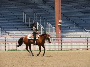 Female rider in the outdoor arena at the Boulder County Fairgrounds competing in a St. Vrain Roundup Club show
