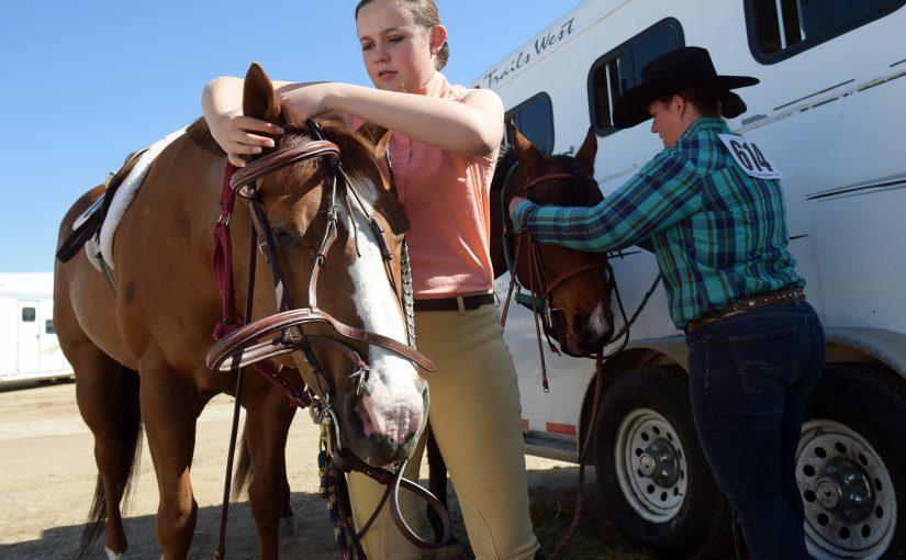 Rider prepares her horse for a SVRC show.